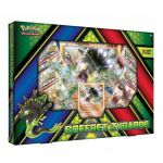 Coffret Pokémon Zygarde