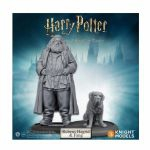 Jeu de Plateau Pop-Culture Harry Potter, Miniatures Adventure Game: Rubeus Hagrid